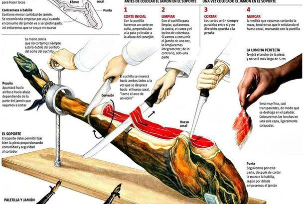Anatomía del jamón ibérico (Posts by 7 Bellotas®) | Pinterest ...