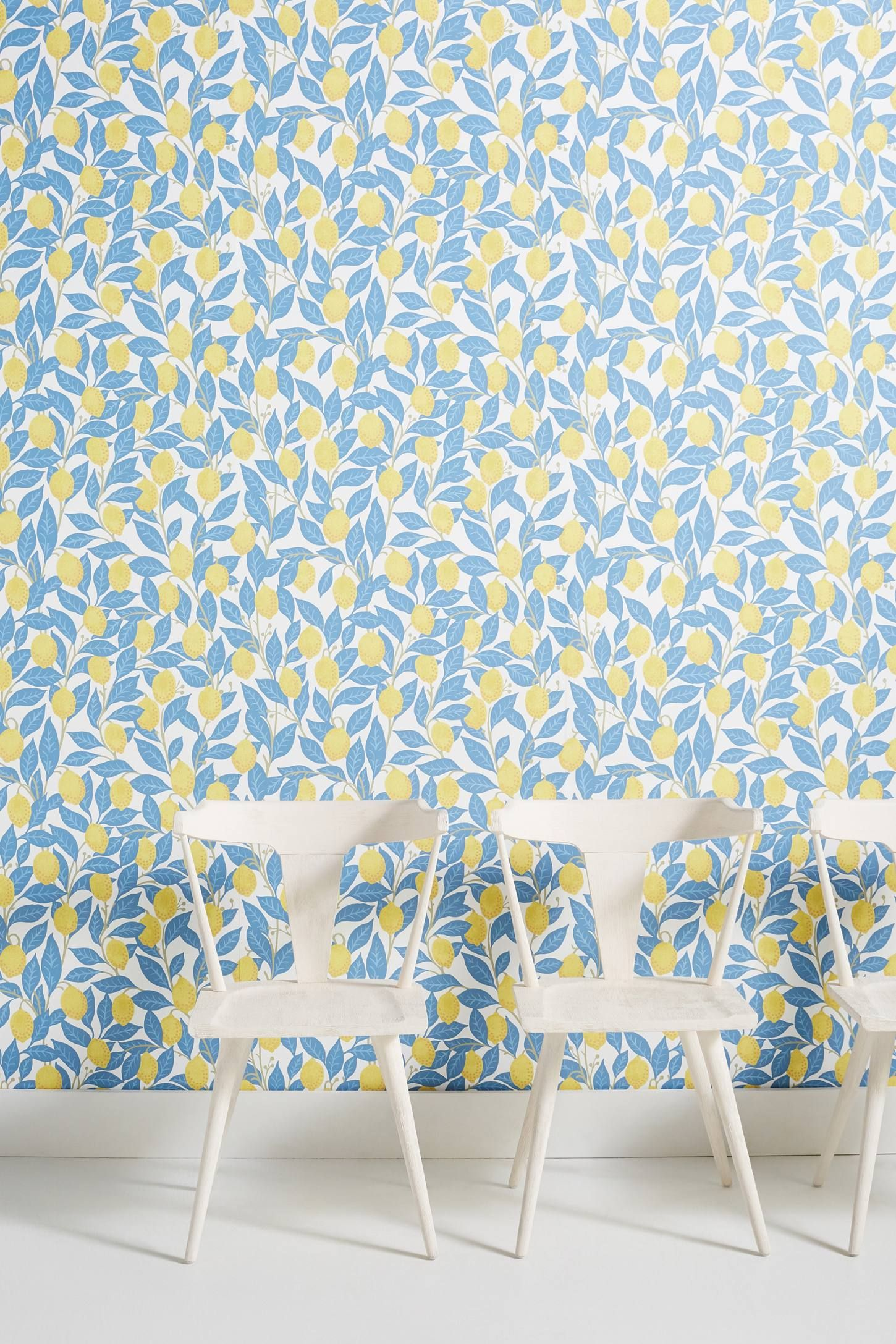 Lemons Wallpaper Modern wallpaper accent wall, Kitchen