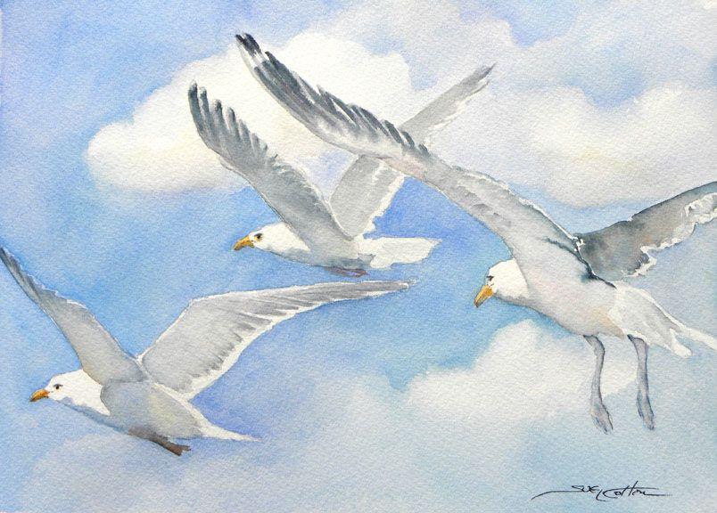 Epingle Par Soundarjee Sur Oiseaux Oiseau En Aquarelle Dessin