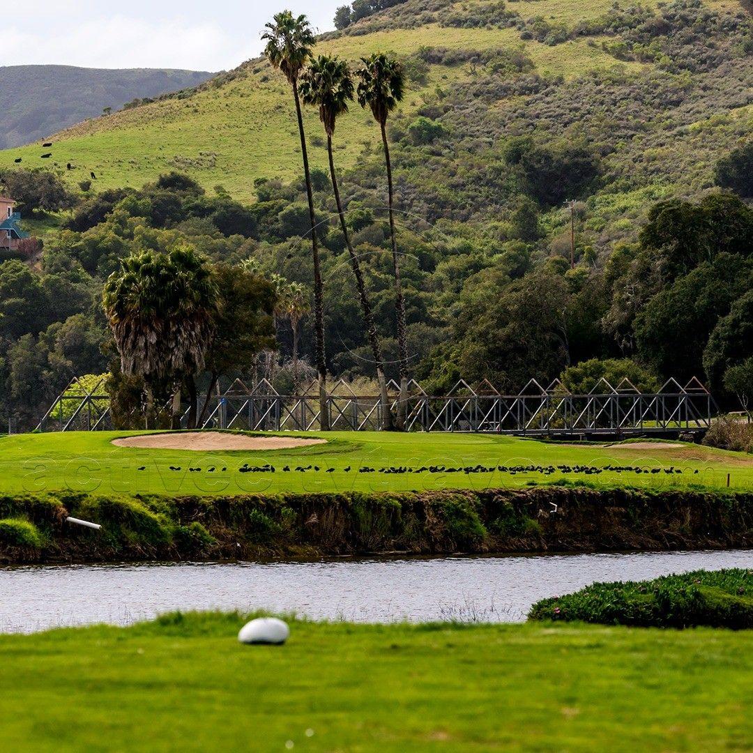 17++ Avila beach golf resort green fees info