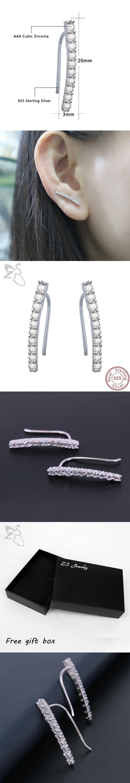 ZS Luxury Earring for Women Party Wedding Stud Earrings 925 Sterling