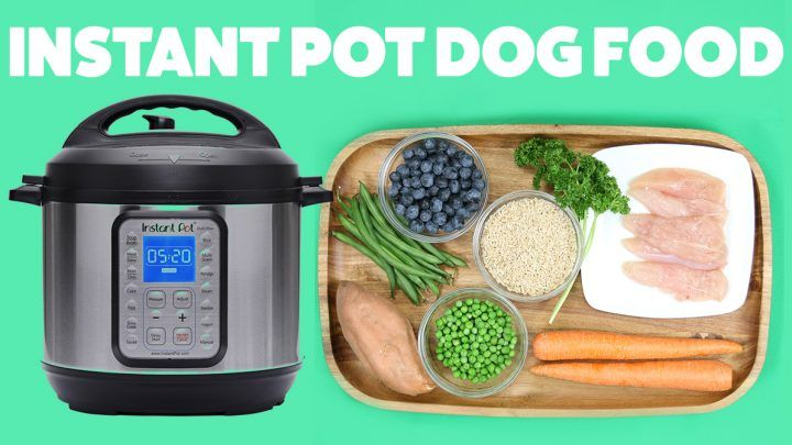 Easy diy dog food you can make in your instant pot make