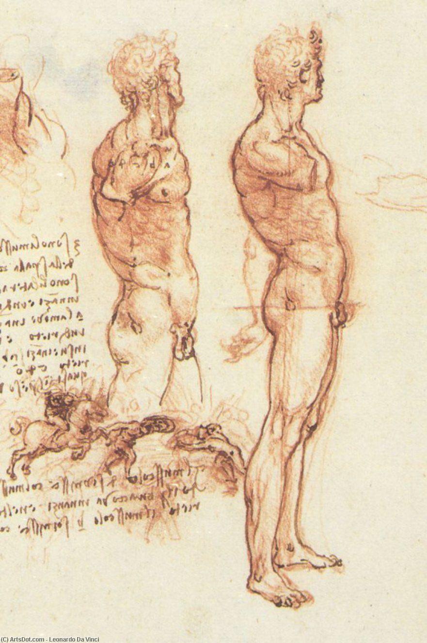 Leonardo Da Vinci-Mann anatomie | Leonardo Da Vinci | Pinterest ...