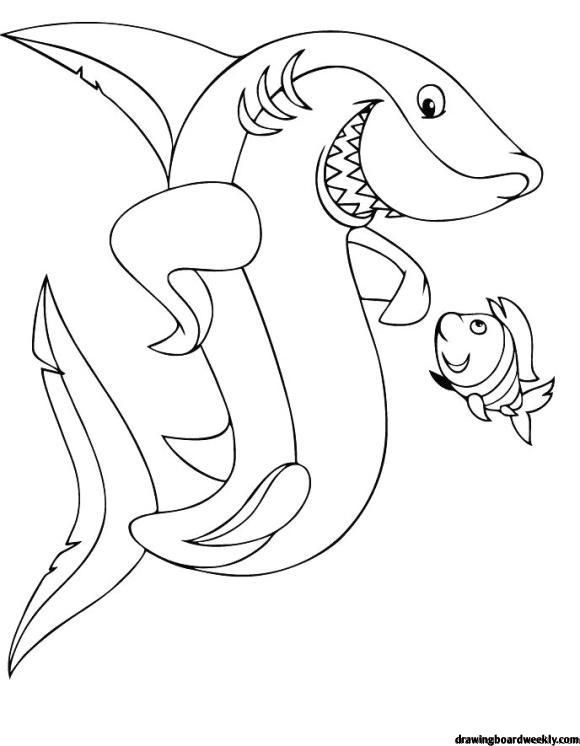 Baby Shark Coloring Pages To Print Design