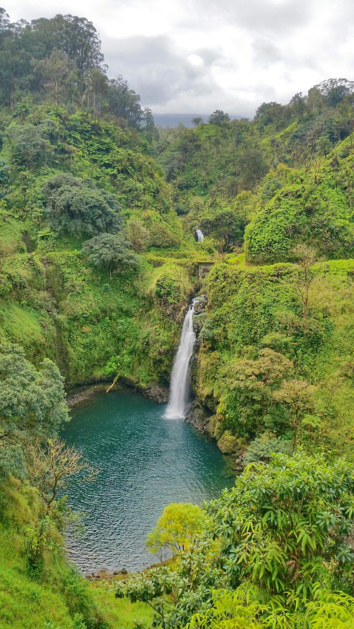 50+ things to do in Maui (mostly FREE!) for first trip to Hawaii 🌴 Maui travel blog