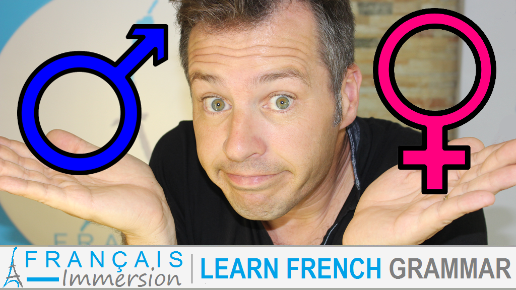 French Nouns Gender Of Nouns Masculine Feminine French Nouns Learn French Learn French Beginner