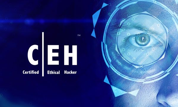 Ethical Hacking Proves More Lucrative Than Software