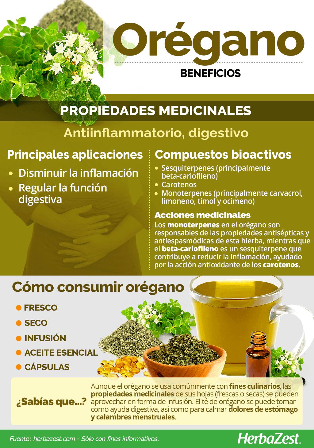 410 Ideas De Beneficios De Ingredientes En 2021 Beneficios De Alimentos Frutas Y Verduras Beneficios Recetas Para La Salud