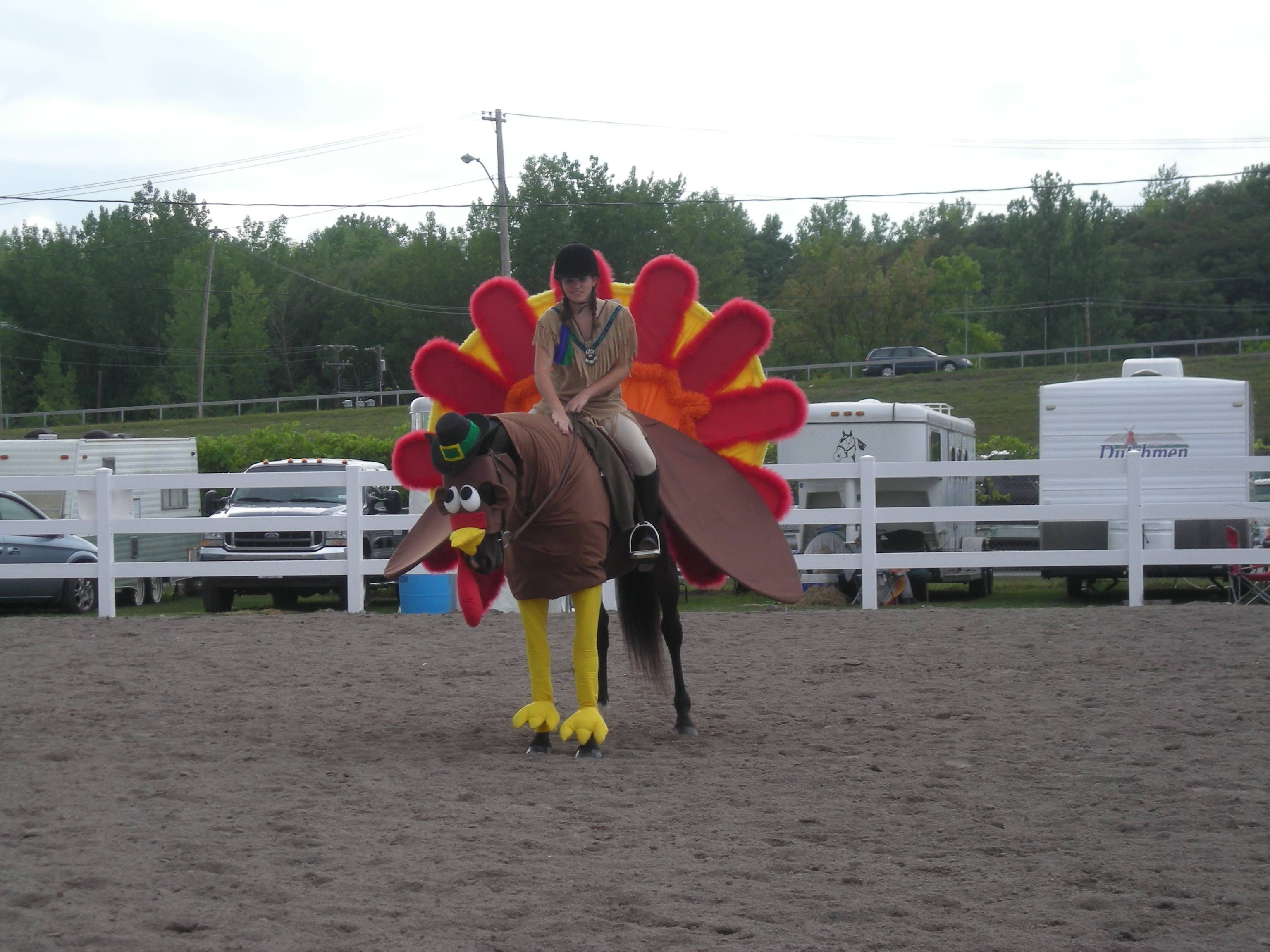 homemade horse costumes | ... his horse rio for winning the 2011 ...