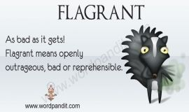Flagrant:Some People Have A Flagrant Lifestyle Or Worse Flagrant Dressing  Style, Which Means