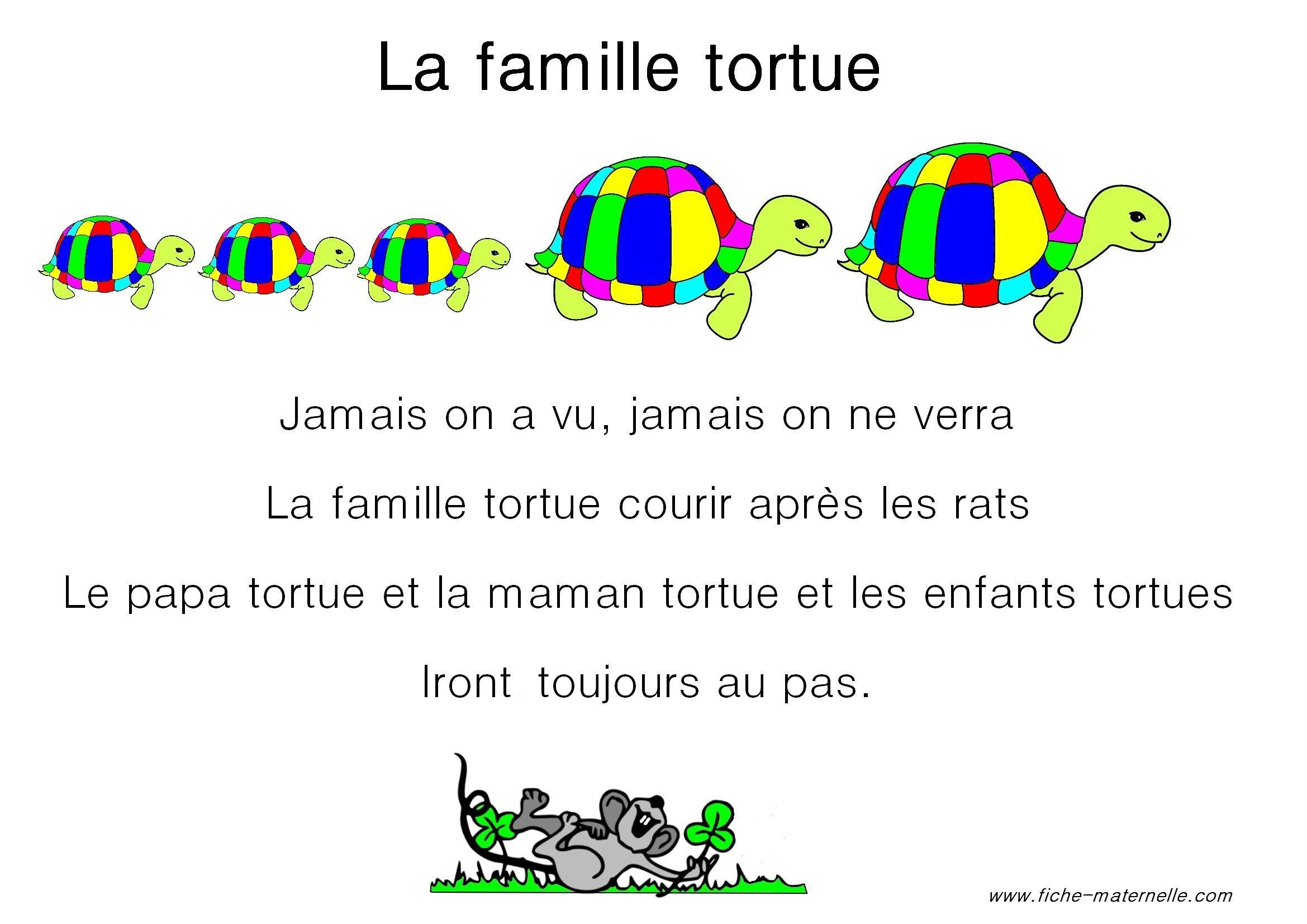Paroles De La Chanson La Famille Tortue
