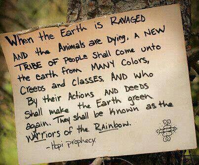 Warriors. Of the Rainbow.