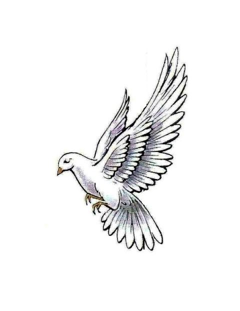 Flowers+Doves+In-Flight | Dove In Flight Tattoo White dove ...