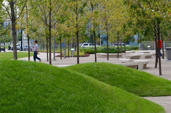 Landscape Architecture · Marina Linear Park. San Diego.