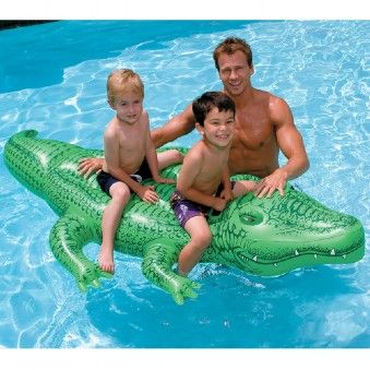 Alligator Pools And Toys