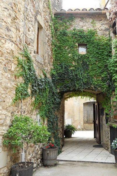 Hiedra pared jardin pinterest jardines jardiner a y - Enredaderas de interior ...