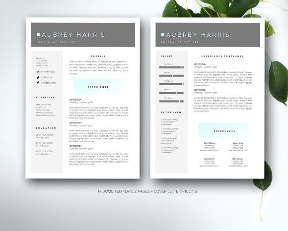 Resume Template For MS Word By Fortunelle Resumes On Graphicsauthor