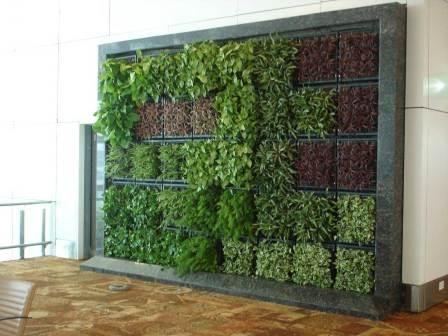 Charmant Green Walls In India | Vertical Gardens | Vertical Gardening In .