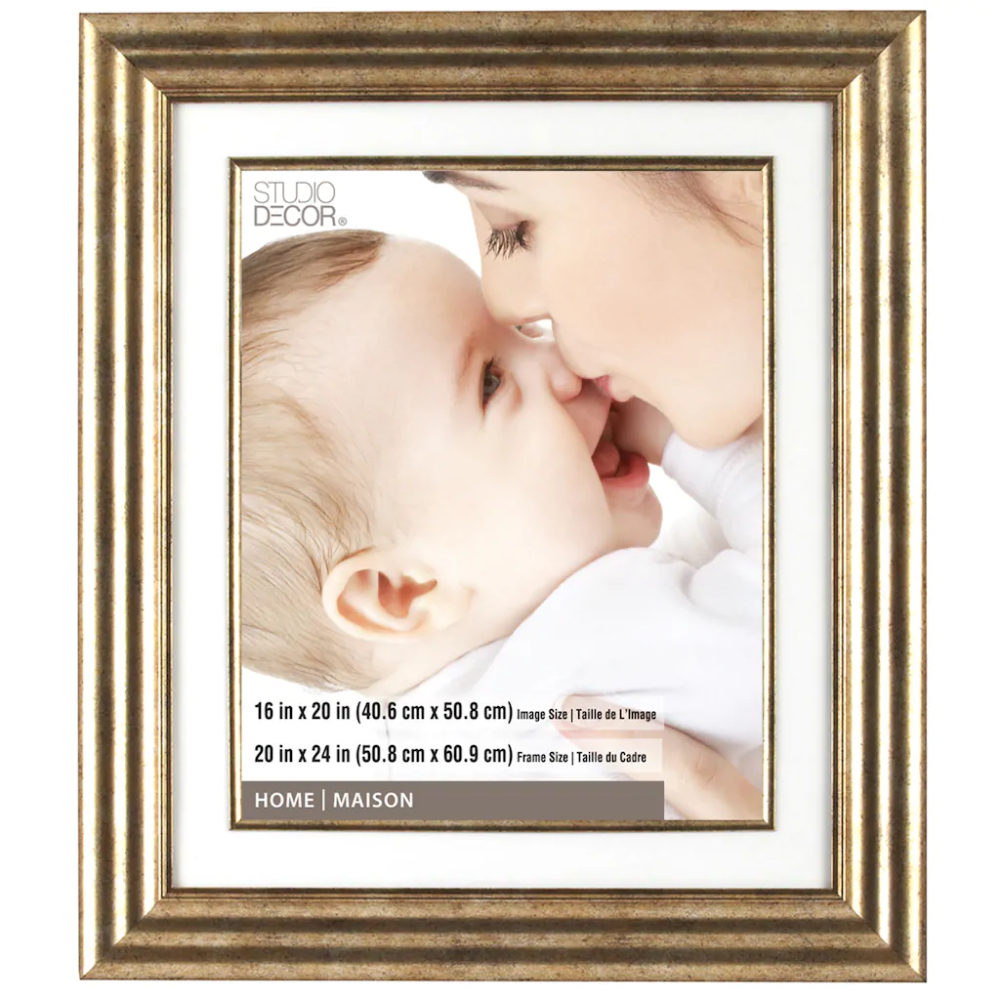 Champagne Frame 20 X 24 With 16 X 20 Mat Home Collection By Studio Decor Studio Decor Portrait Frame Frame