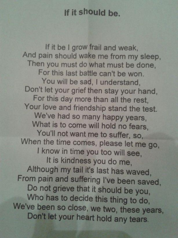 Vet sends heartbreaking poem to owner of dog put to sleep