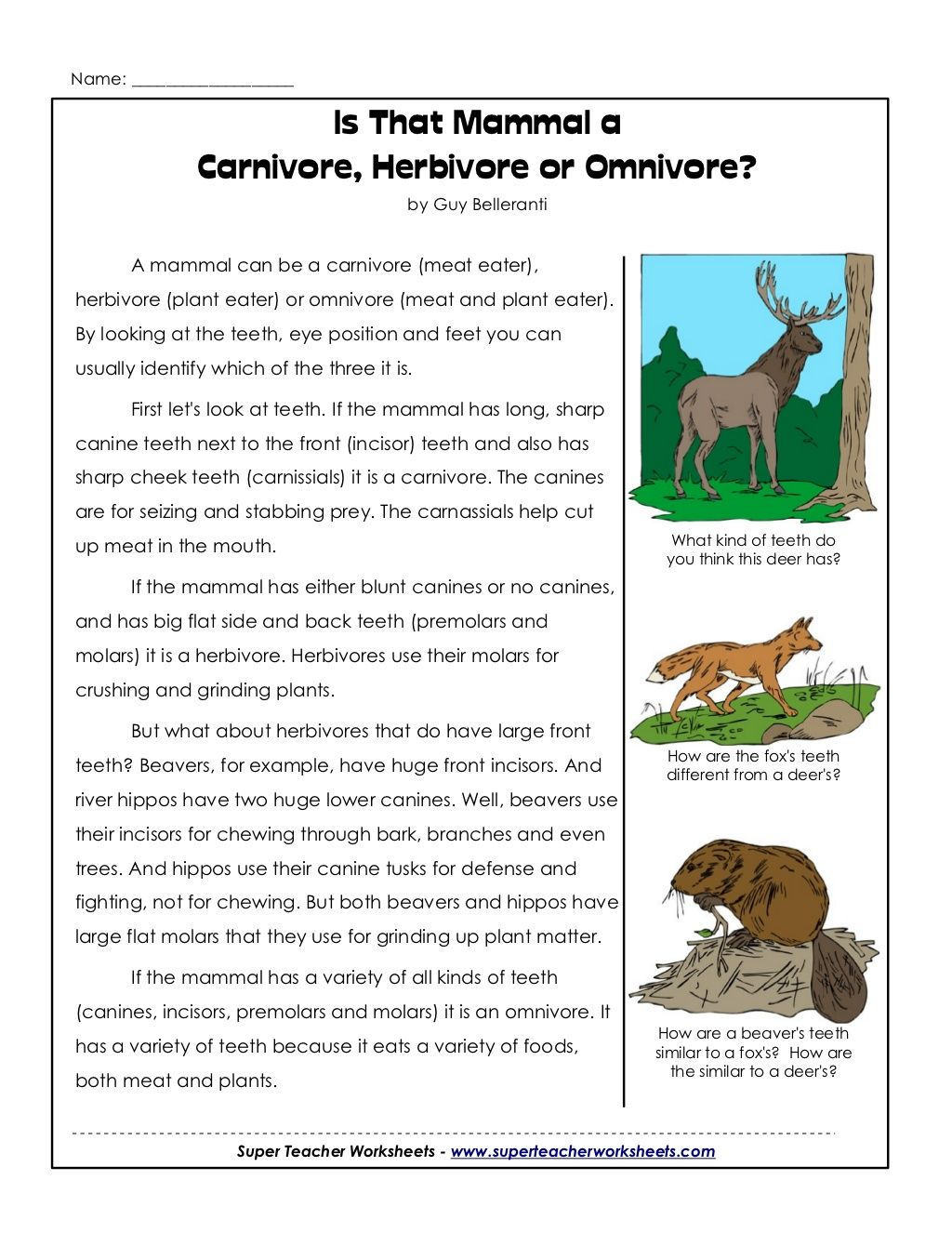 worksheet Herbivore Carnivore Omnivore Worksheet cycle 2 week science carnivores herbivores or omnivore cc omnivore