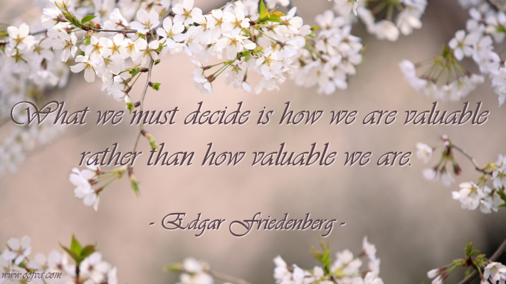 What we must decide is how we are valuable rather than how valuable we are. –Edgar Friedenberg