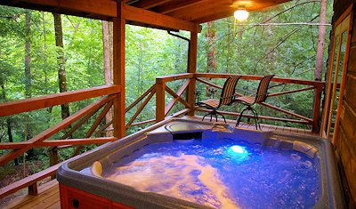 Log Cabin with Hot Tub near Asheville - Okay maybe this one too
