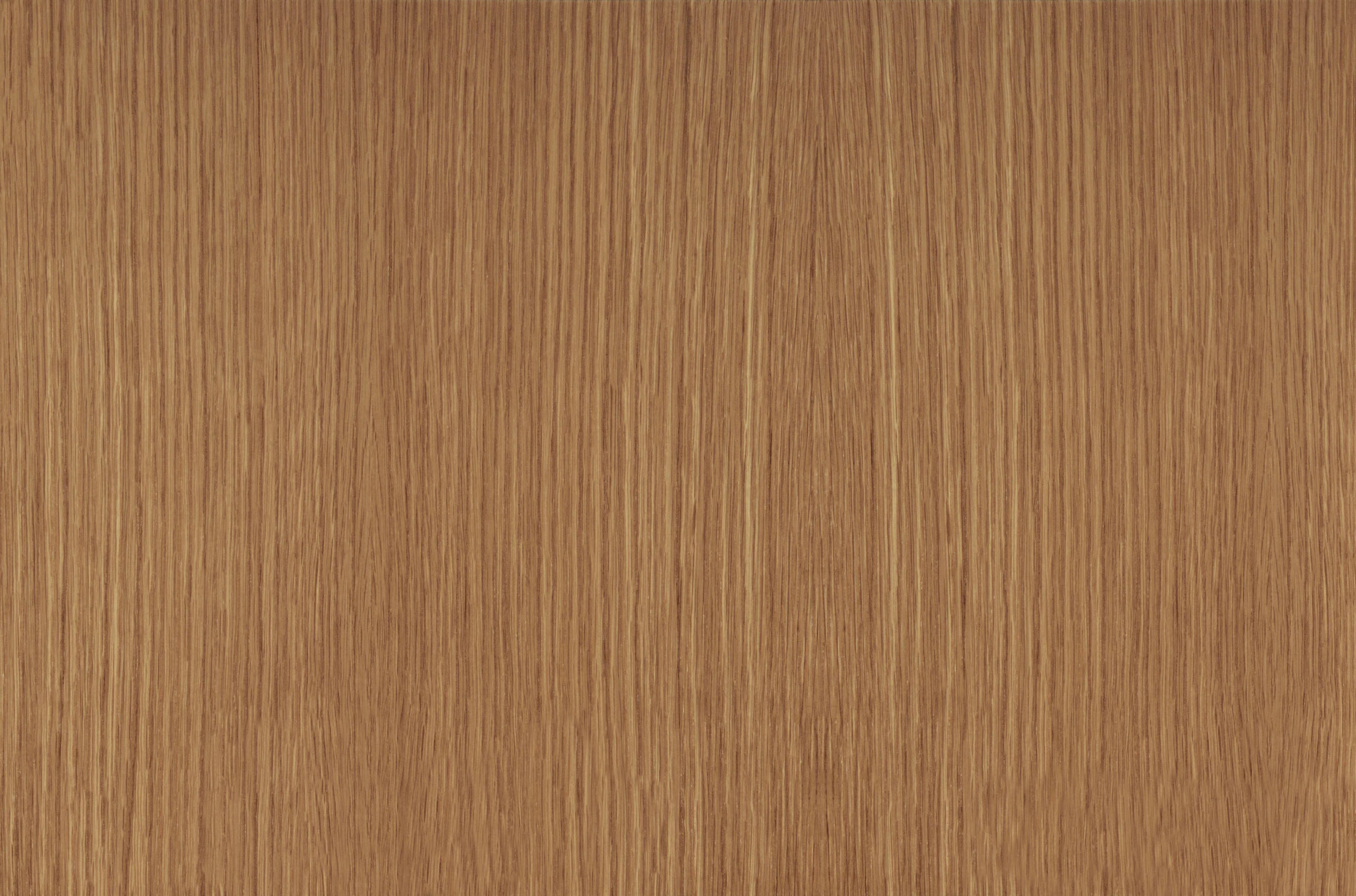 American White Oak (Riftcut) Wooden textures