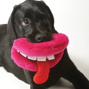 Best Dog Toys For Large Breeds Silly Dogs Dog Toys Toys For