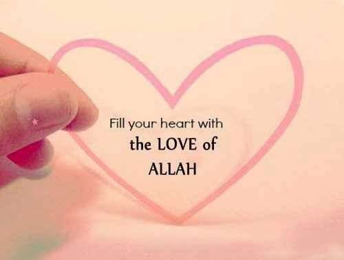 What a nice feeling To Be In Love With ALLAH No Pain,No Disappointment , No worries. Just Blessings, Blessings AND Blessings.! Al hamdu lillah.