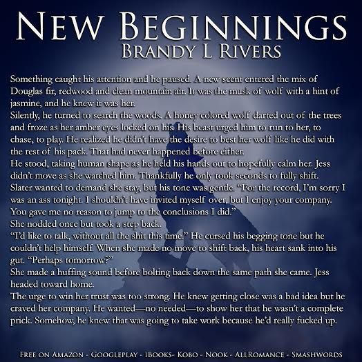 RED MOON...: #Teaser from New Beginnings by Brandy L Rivers