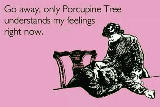 Porcupine Tree quote | Music | Pinterest | Tree quotes