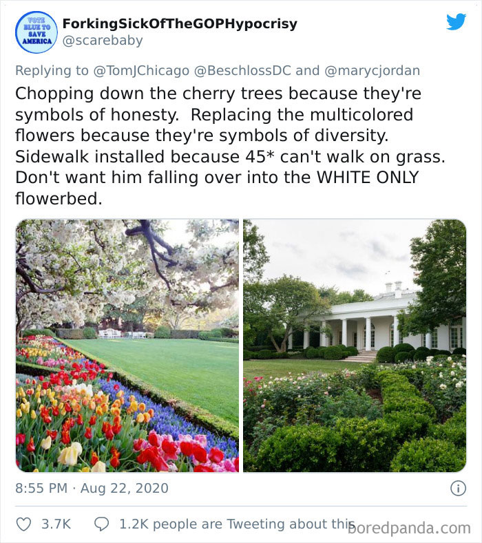 People Are Ridiculing Melania Trump's White House Rose