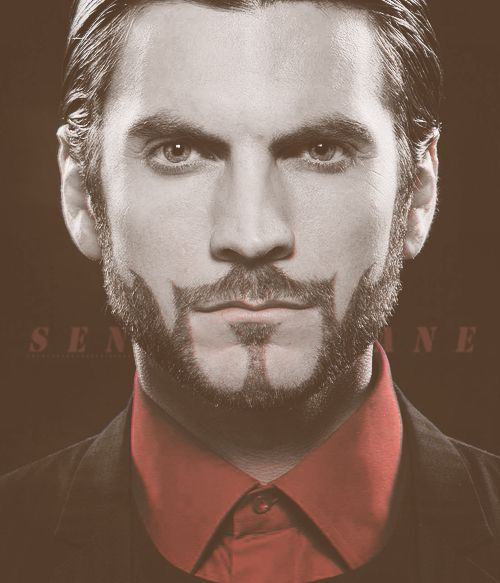 Seneca Crane If I Ever Accept A Guy With A Short Beard It Will Have To Be Styled Like This Absolutely Hunger Games Beard Hunger Games Hunger Games Movies