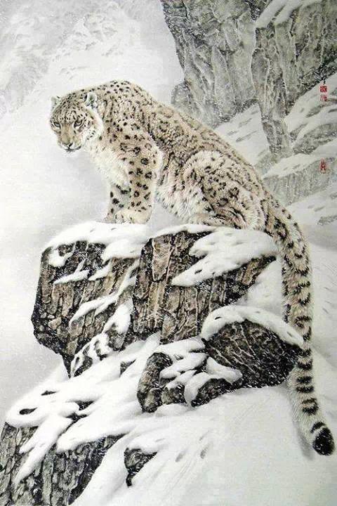 Guepardo de las Nieves dibujo | Felinos | Pinterest | Cats, Animals ...