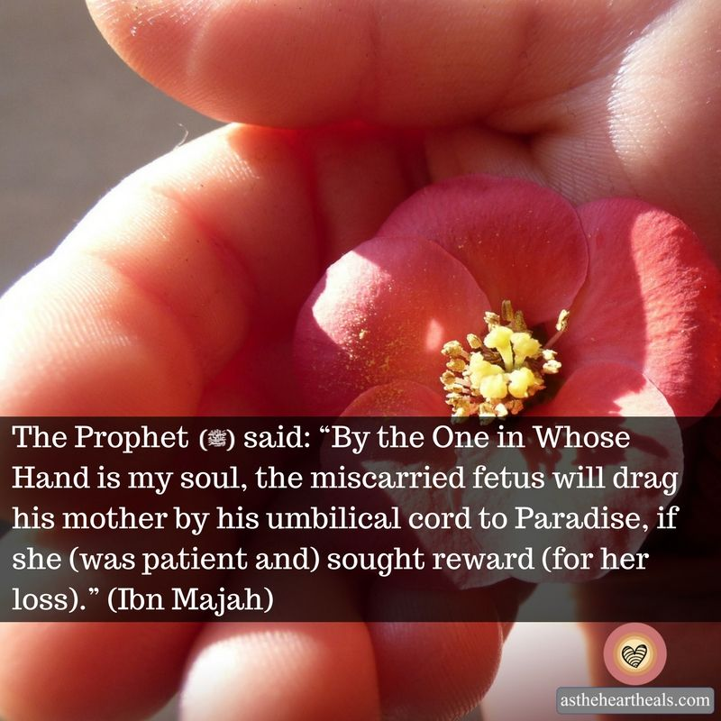 Hope From The Sunnah For Parents Who Have Lost A Child Islam