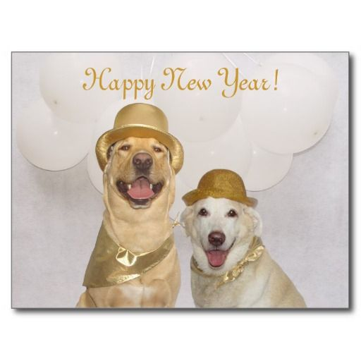 Customizable Dog Lab Happy New Year Holiday Postcard Zazzle Com In 2020 Happy New Year Dog Dog Holiday Cards Lab Dogs