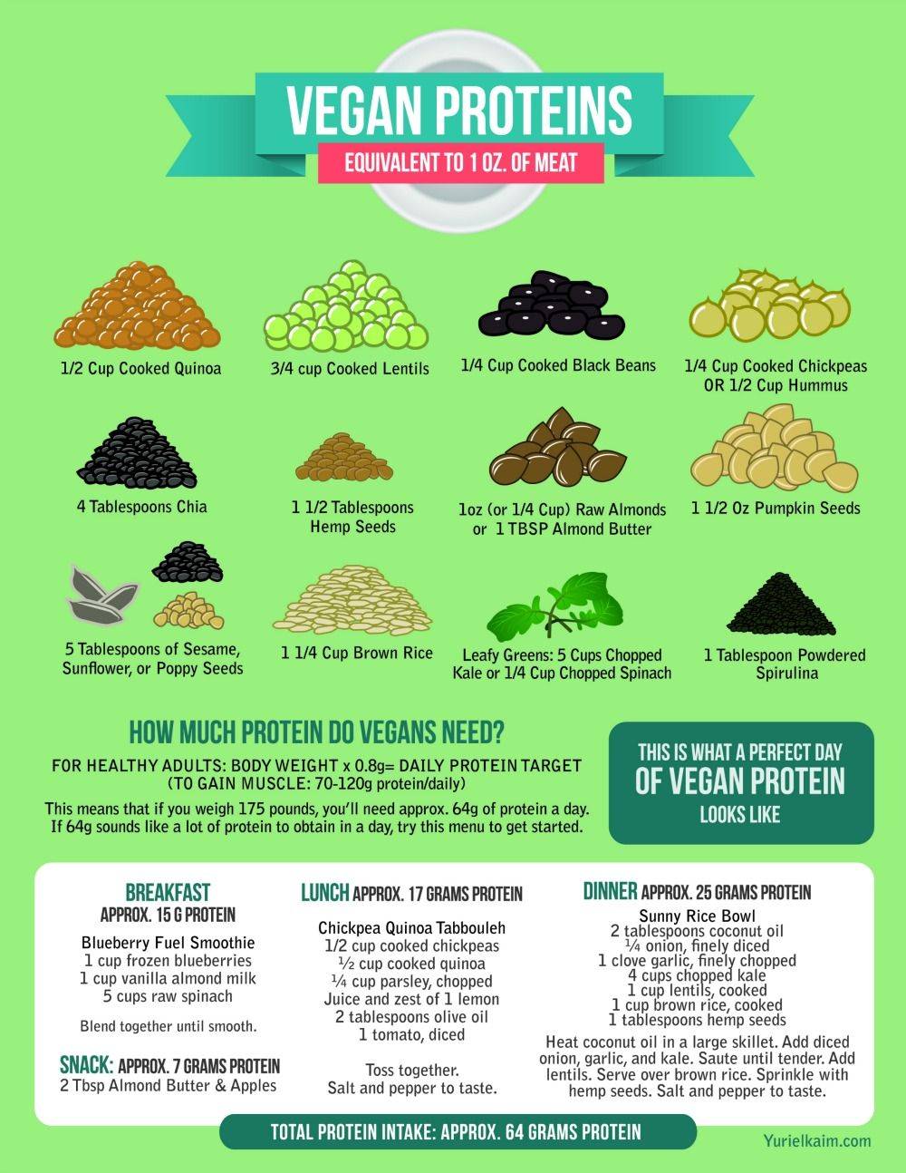 Image result for vegan protein sources information