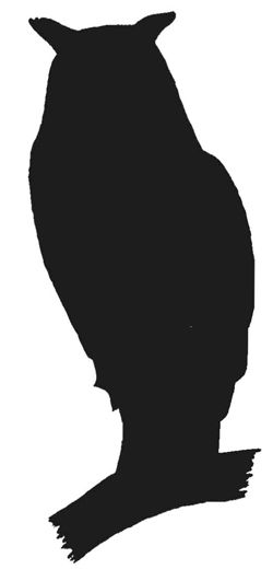Owl Silhouette Owl Silhouette Silhouette Painting Owl Drawing Simple