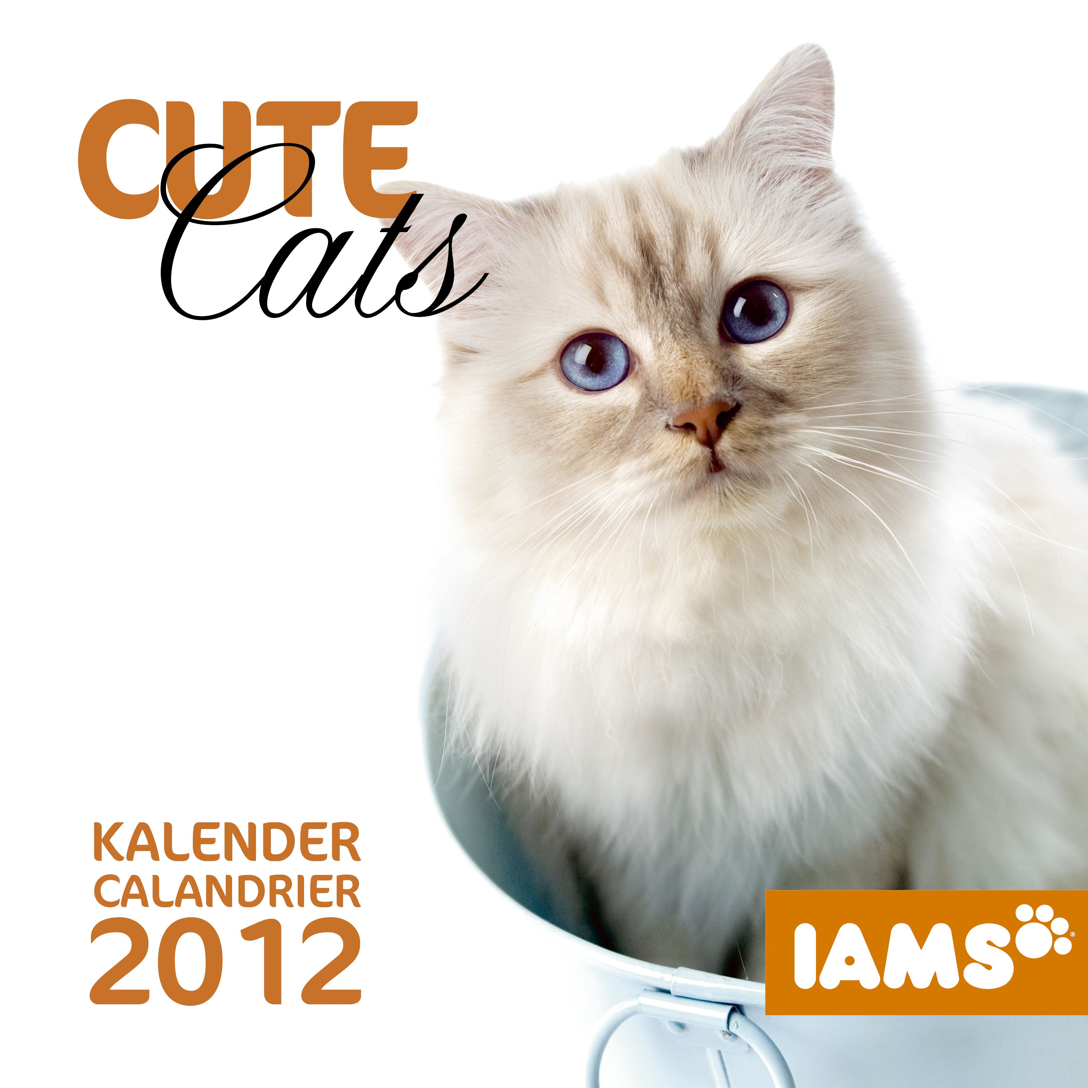 Cat food iams calendar