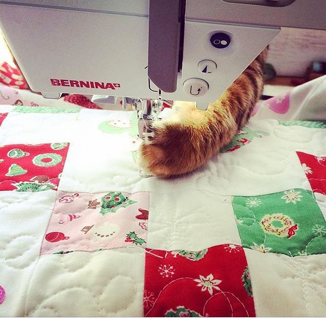 Amanda of @jedicraftgirl has a tutorial coming up on Thursday that you're going to love! Hopefully her kitty Simba will let her finish! Anyone else have this problem?  #pennyrosefabrics #ilovepennyrose #littlejoysfabric #sewingcats