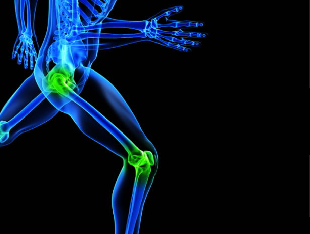 knee #orthopaedic #powerpoint #template. this template showing, Skeleton