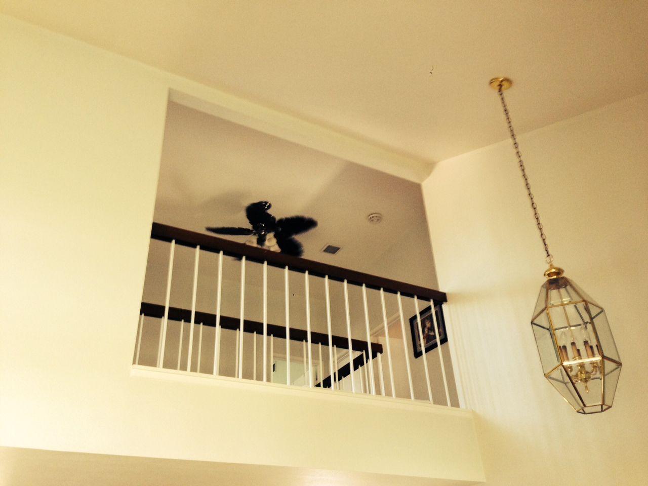 Vaulted ceilings  ~ Sheryl Lynn Johnson  (805) 907-8270 SherylLynn@ConnectingHeartsToHomes.com CalBRE #01446902