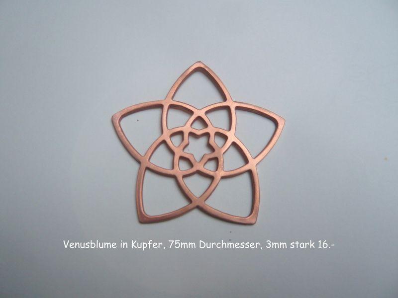 Venusblume in kupfer 7 5 cm durchmesser von kunsthoeger for Wanddeko kupfer