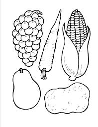 Hasil Gambar Untuk Simple Fruit Coloring Pages Bahan Modul