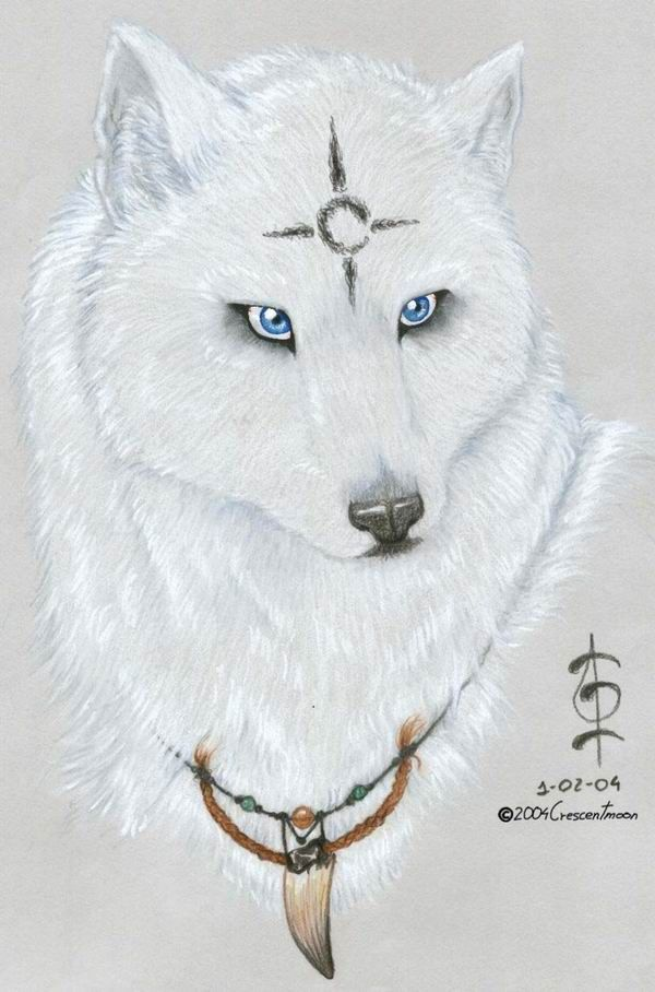 Black wolf with blue eyes drawing - photo#32