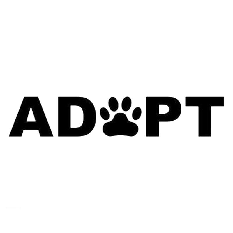 "ADOPT A Pet Paw Rescue 4/"" Decal Sticker Save a Life Dog Puppy Cat Kitten Kitty"