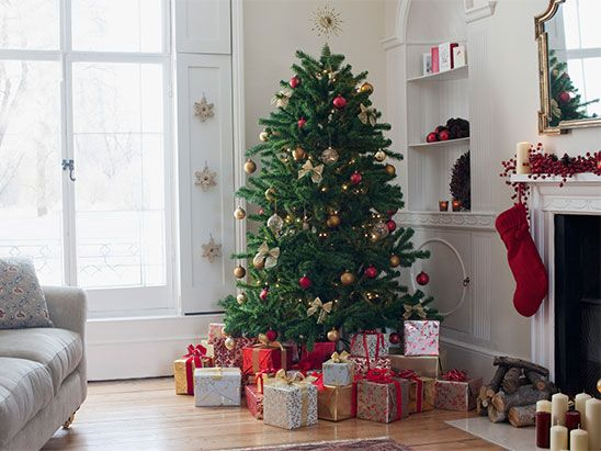 Win A 7ft Luxury Regency Fir Christmas Tree Christmas Tree Care Real Christmas Tree Christmas Decorations Cheap