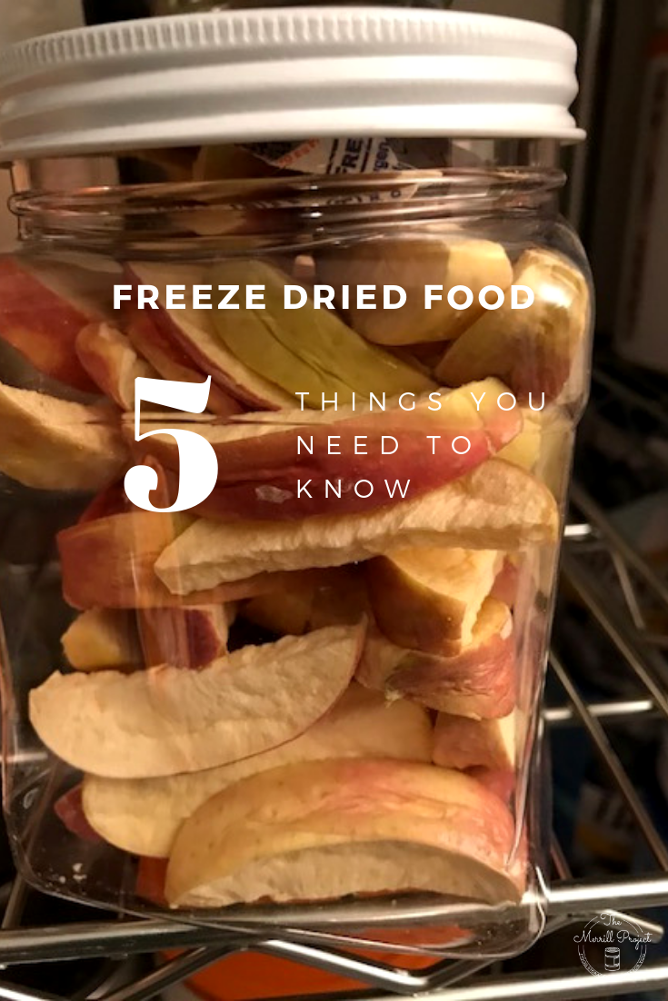 Freeze Dried Food- 5 Things You Need to Know