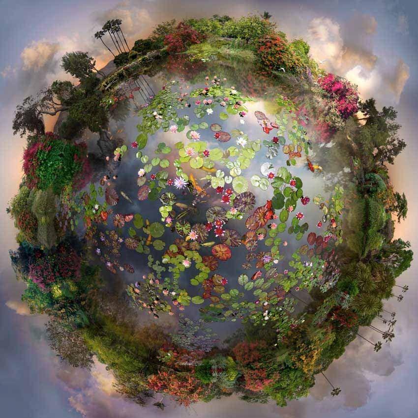 Удивительный букет для планеты земля